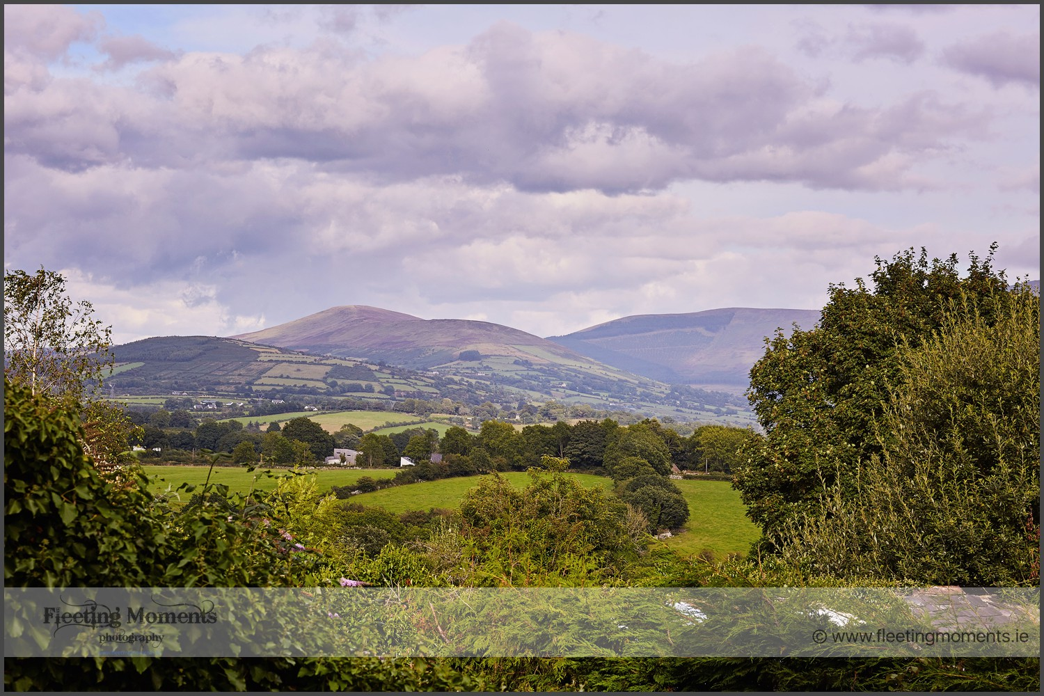 wedding-photographers-carlow-at-step-house-hotel-in-borris-85